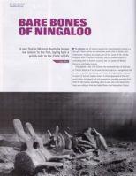 Scuba Diver Ningaloo