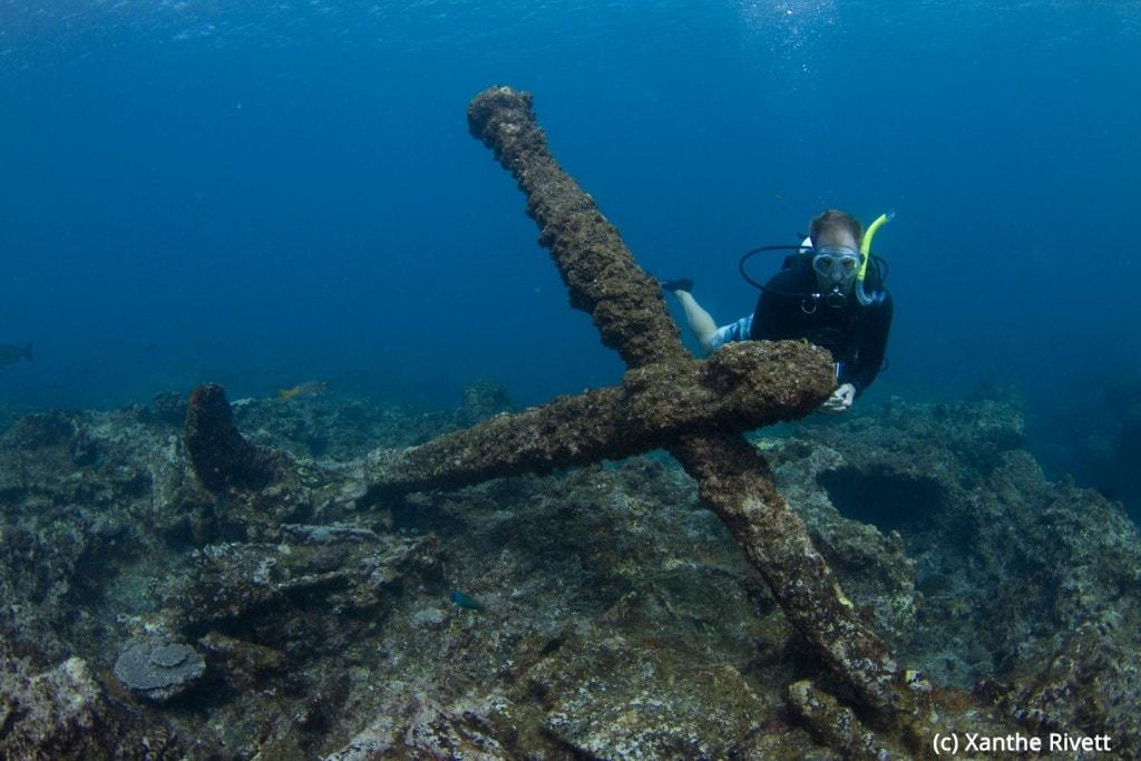 Ningaloo_Reef_Western_Australia-8136