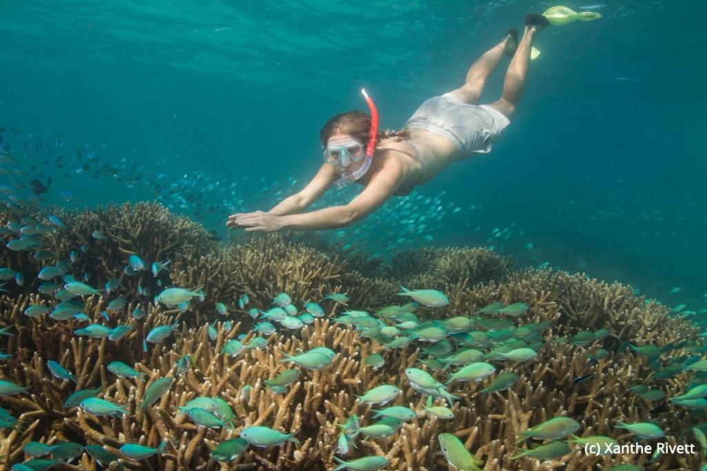 Ningaloo_Reef_Western_Australia-9158