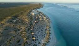 Glamping Ningaloo Reef